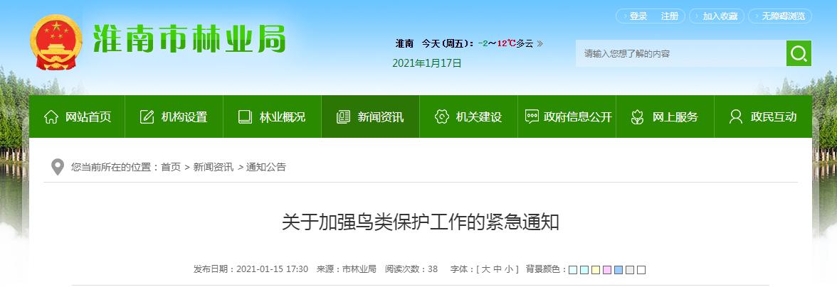 淮南天鹅非正常死亡后续:当地四部门联合发文加强鸟类保护