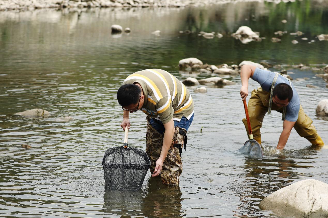 水生生物调查