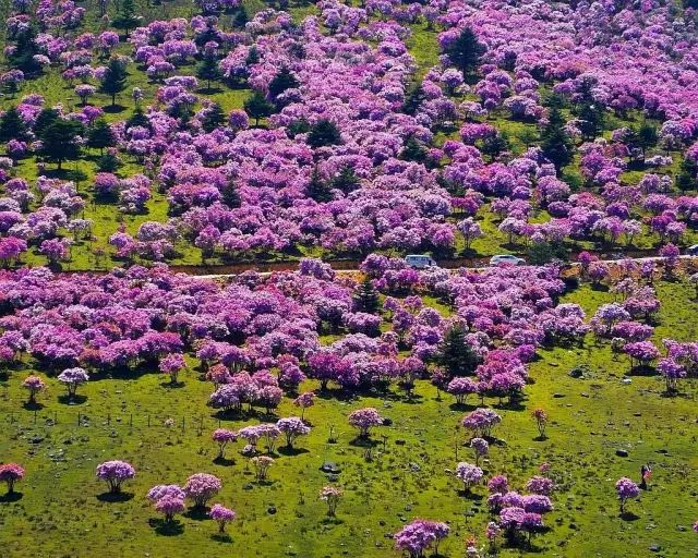 △螺髻山海口牧场©来源:凉山在线