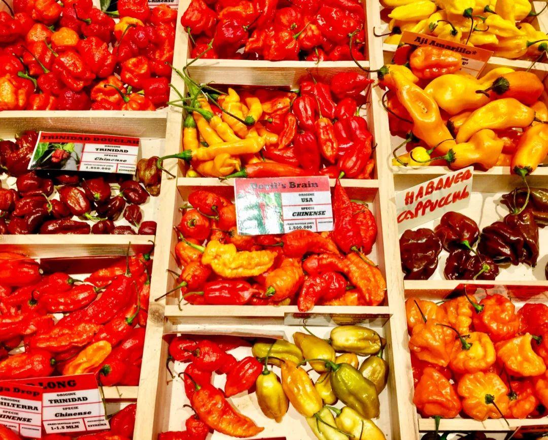 △有这么多辣椒品种,真是让本老开了眼/unsplash