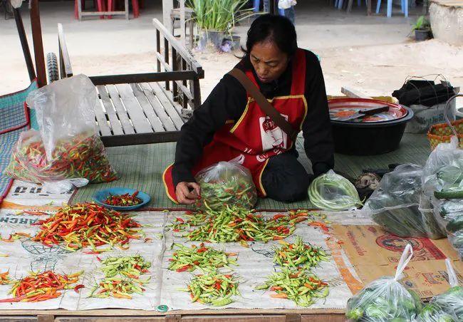 △当地的妇女出售自己所种植和采集的辣椒/bioversityinternational