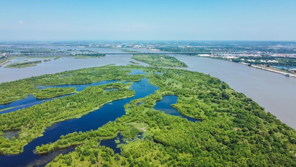 黑龙江省林业和草原局供图