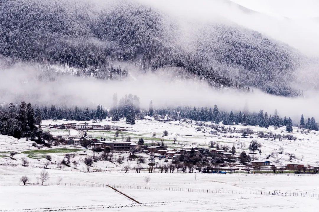 世间最美,不过是西藏下了场雪......