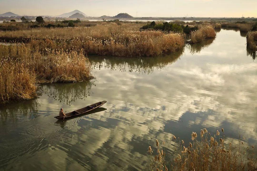 下渚湖湿地风景区