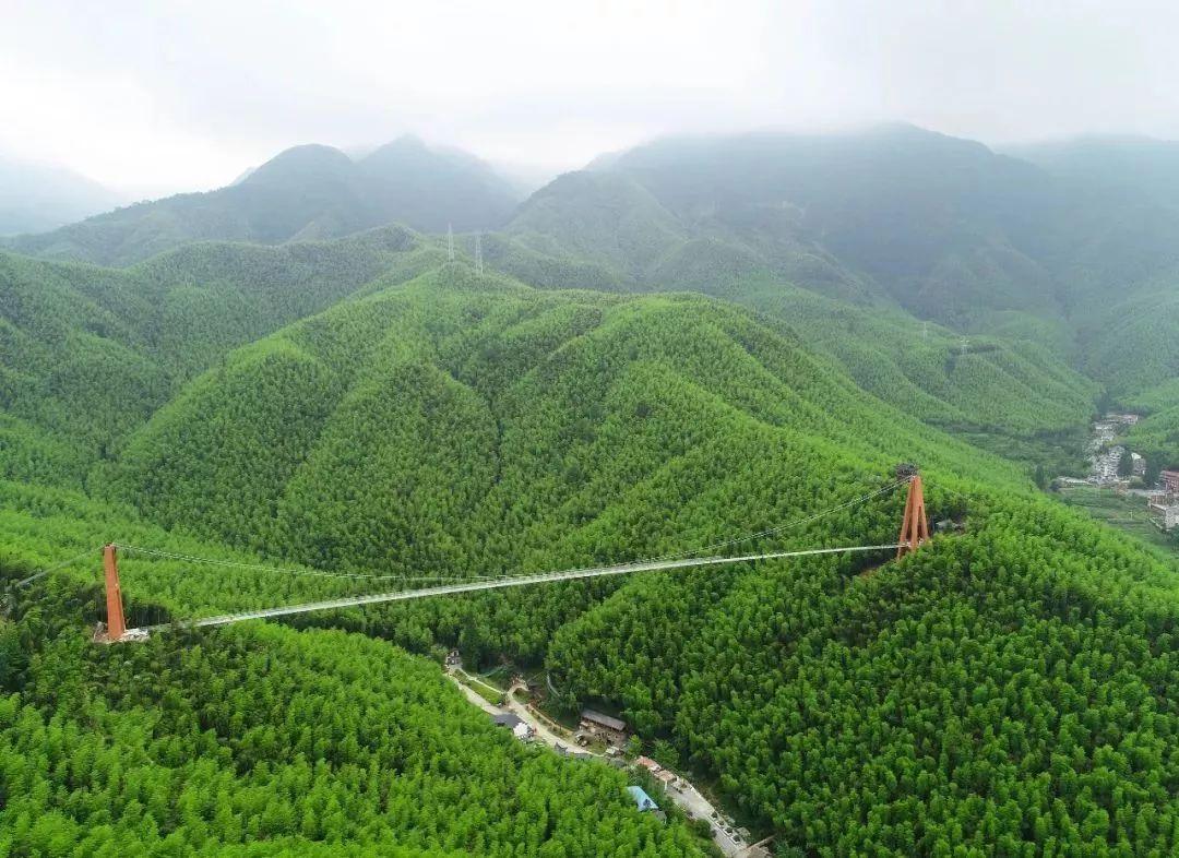 中国大竹海