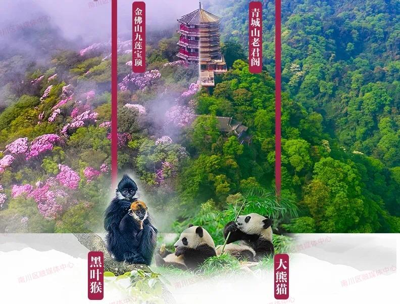 春节旅游哪里好:旅游景点排行榜靓翻了