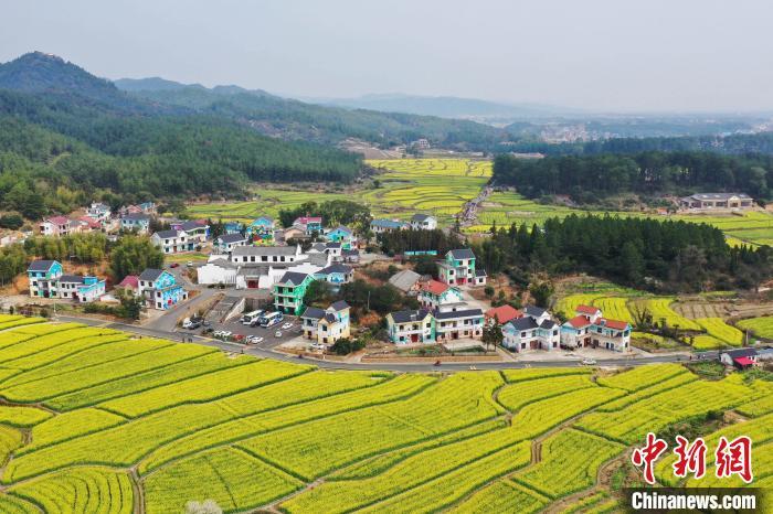 空中俯瞰江西省万安县田北农民画村景区美景。 邱哲 摄