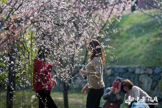 """安徽天柱山:""""后春节时期""""旅游热度不减2 (图片:徐若琼  程斌 等摄).png"""