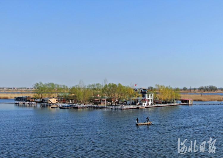 2020年3月19日,无人机拍摄的白洋淀春色。河北日报记者赵杰摄