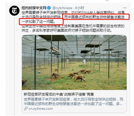 《纽约时报》中文网推特截图