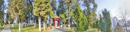 吴山古柏掩映中的吴玠墓 摄影:成子恒