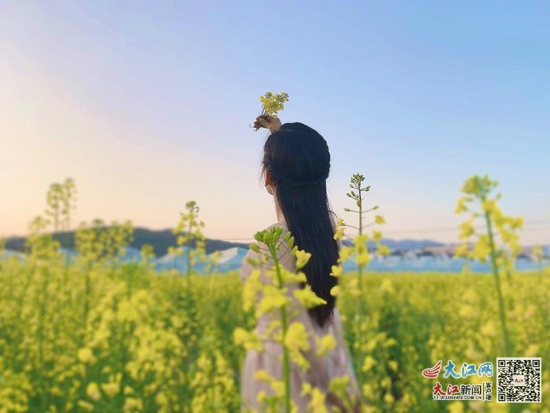游客驻足赏花(王琪 摄影)