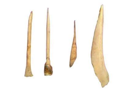 白石村出土的鱼骨器物