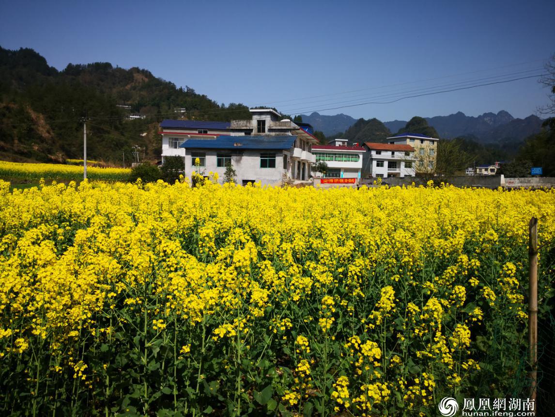 明珠新村好风光