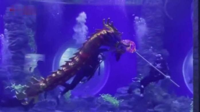 """兰州潜水员""""水下舞龙""""引爆亲子游高峰"""