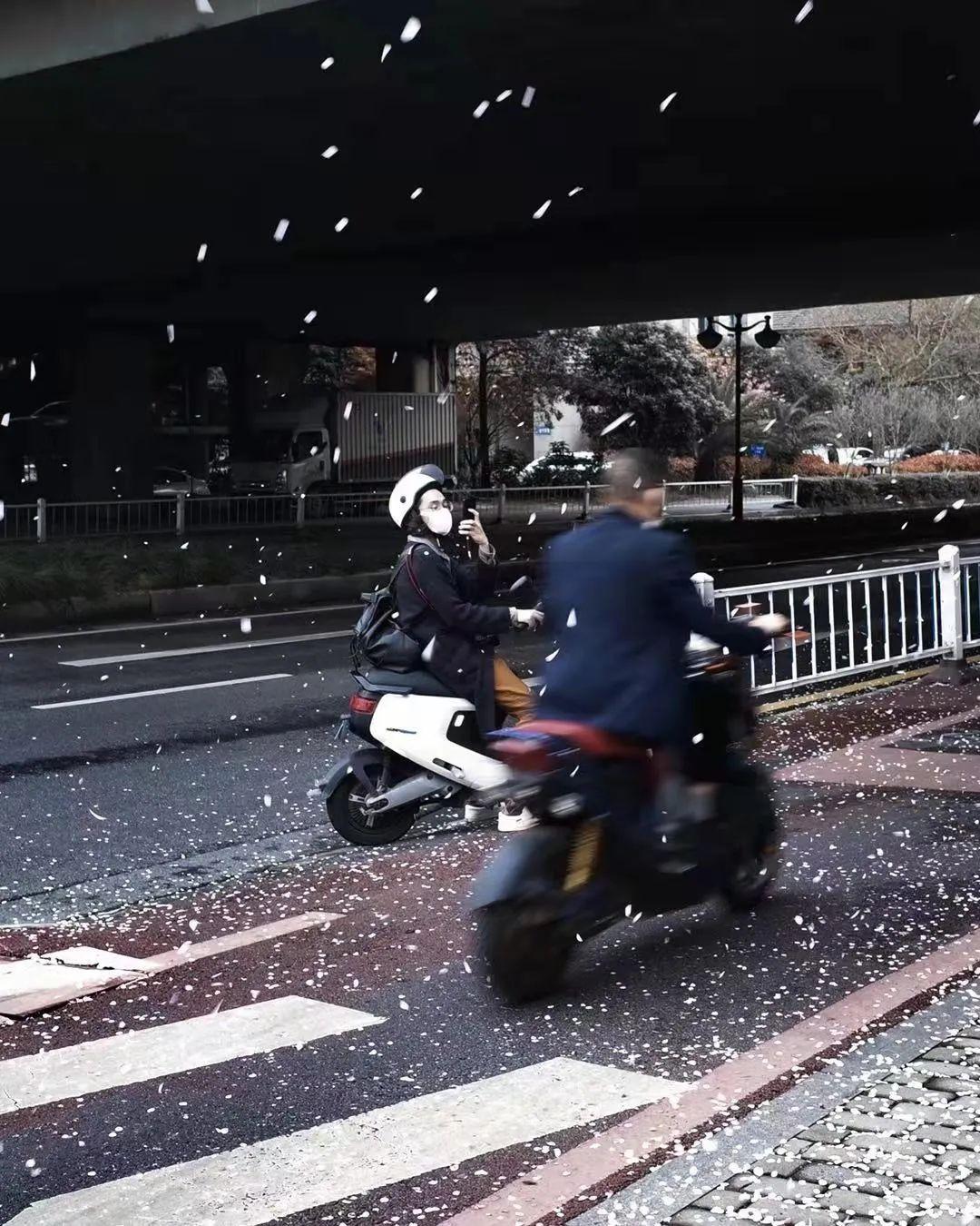 轻纺桥下偶遇的樱花雨 weibo© 266ml