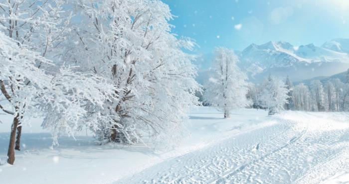 一场白雪悄然而至 一起在青岛欣赏美丽的雪景吧!
