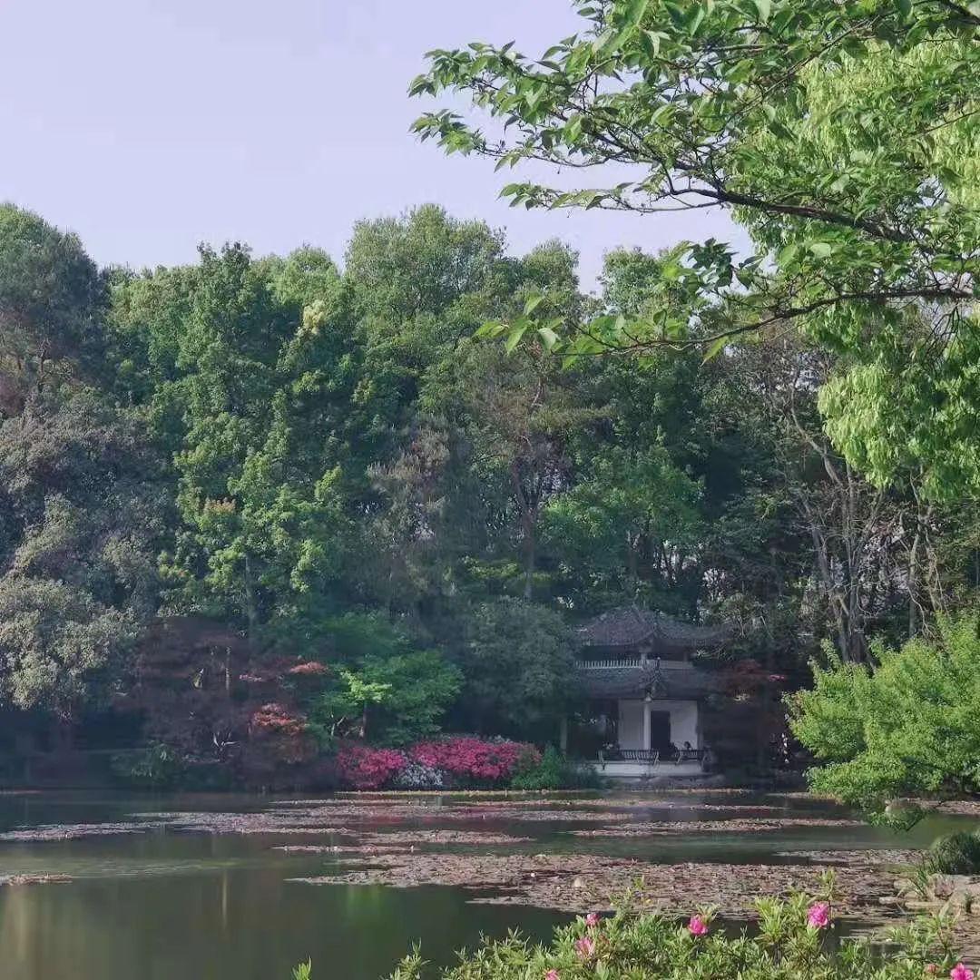 春天的植物园©系系