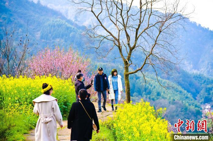 游客正在婺源篁岭赏花,并拍照留念。 金洁 摄