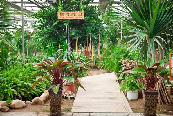 旅投现代农业观光园