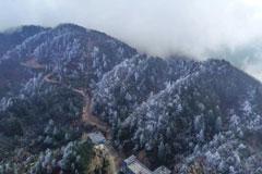 武宁太平山现冬春两季景 云海雾凇伴花香