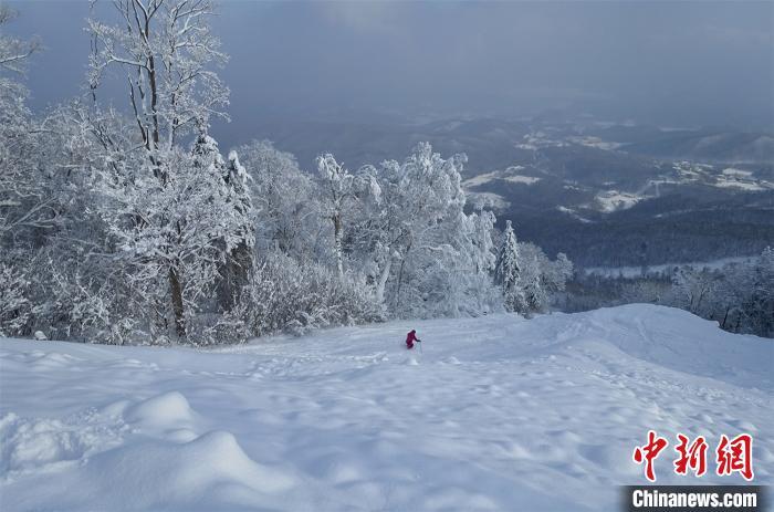 滑雪爱好者在松软的粉雪上畅滑 王成 摄