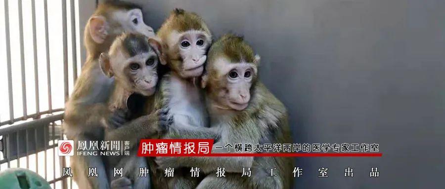 俄罗斯疫苗 哈尔滨太平国际机场