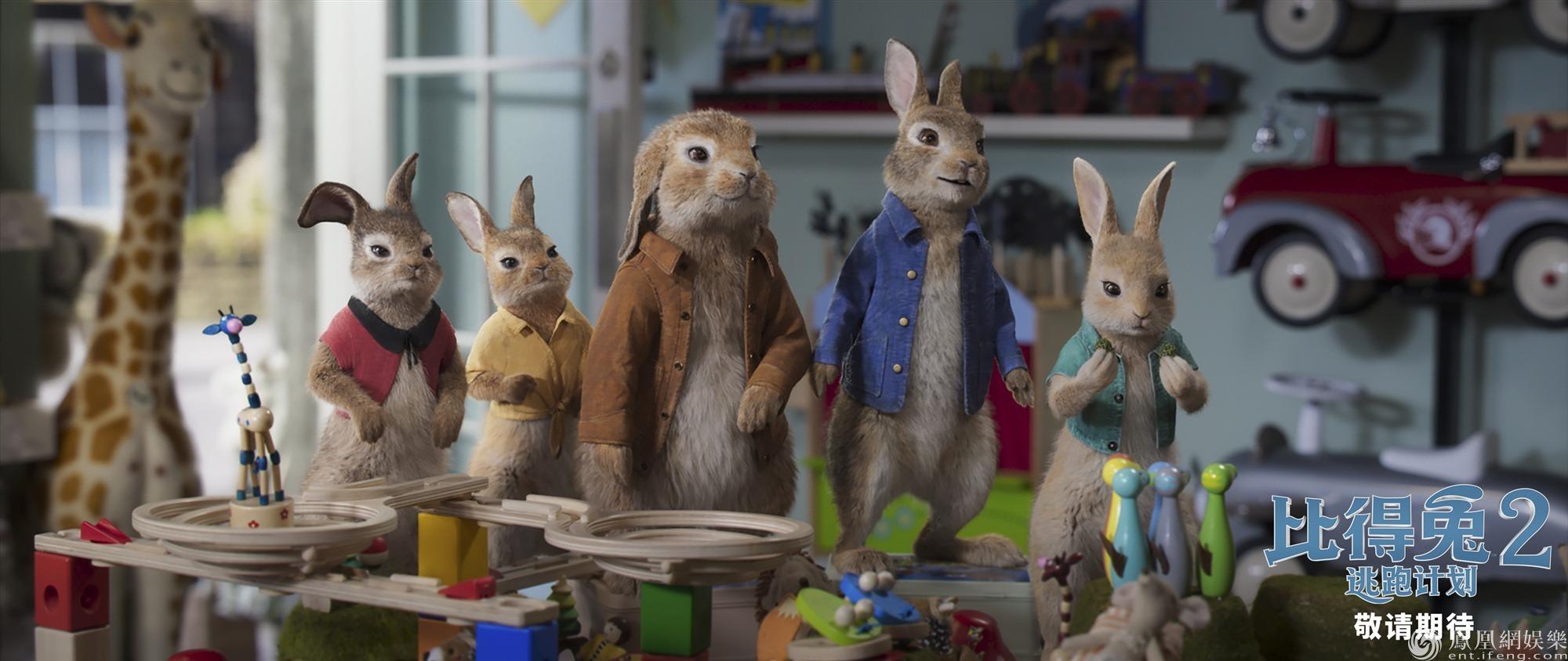 《比得兔2:逃跑计划》北美提档5月14日