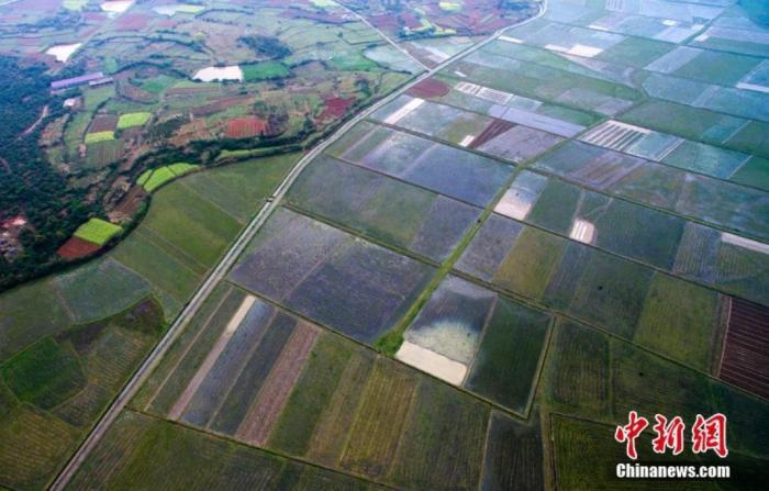 """""""农业大省""""江西的乡村振兴之声:土地、产业、人才是关键"""