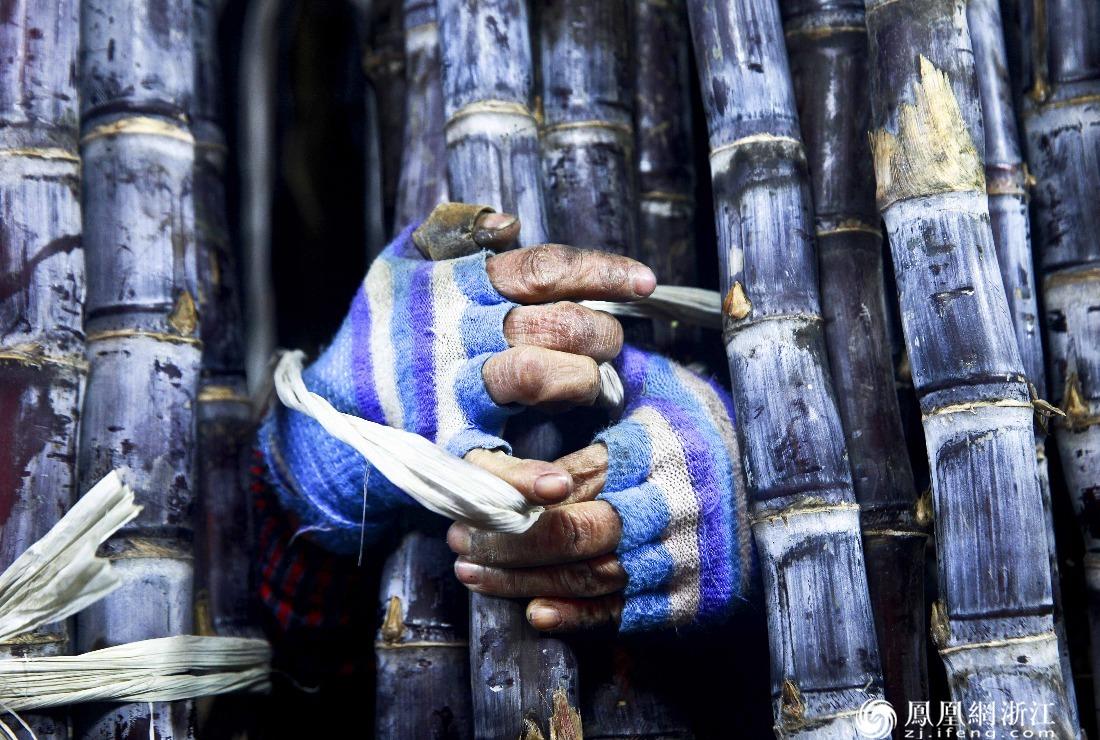 一双手布满了生活的印迹 摄影/沈继平
