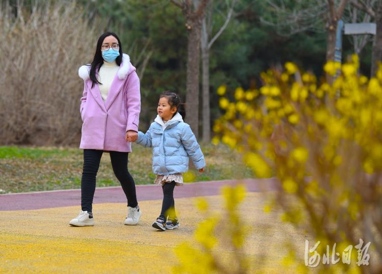 2021年3月11 日,市民在河北省邢台市南和区人民公园踏春赏花。