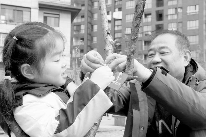 孩子跟爷爷一同认领桃树。