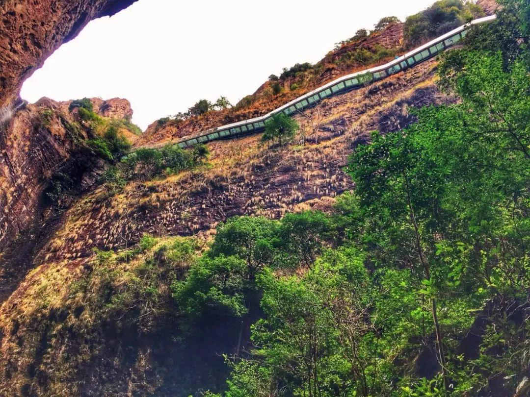 """浙南最不容错过的自驾线路,包揽世界级山海景观,还藏了个""""最美桃花源""""!"""