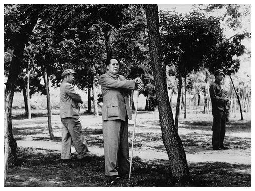 毛泽东为何将一根普通竹拐杖视若珍宝?
