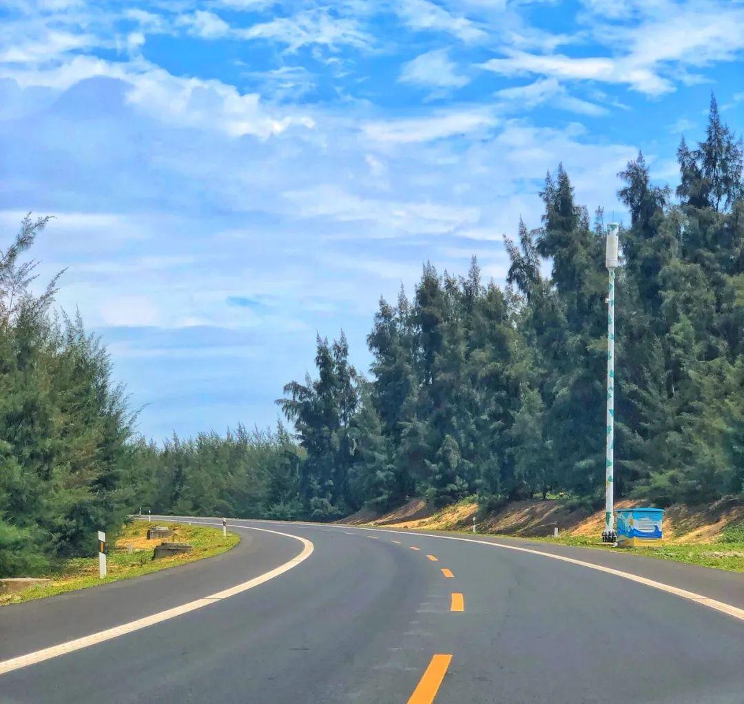 央视力推的这8条高速公路,春天美哭了全世界!