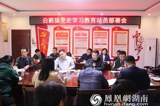 白鹤镇党史学习教育动员部署会