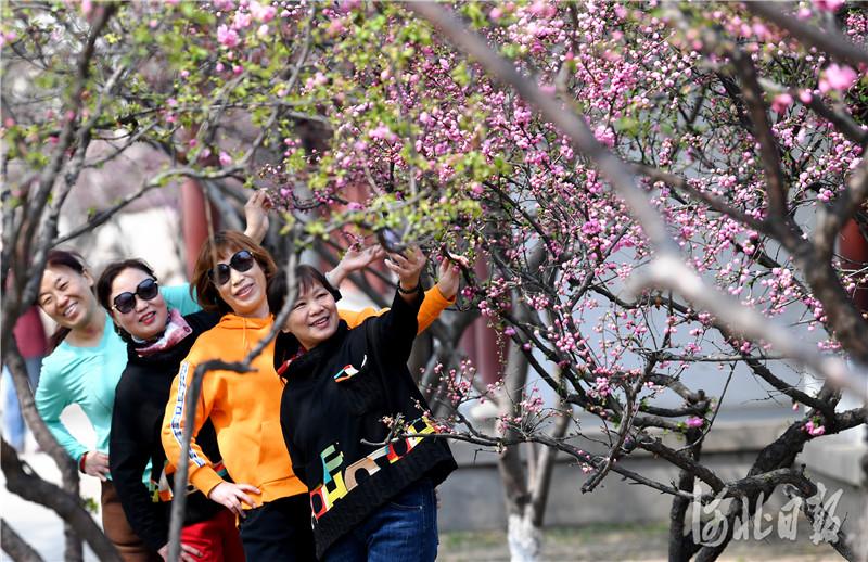 """2021年4月9日,河北省张家口市宣化区皇城街道大新门社区居民在家门口的""""袖珍""""公园休闲。"""