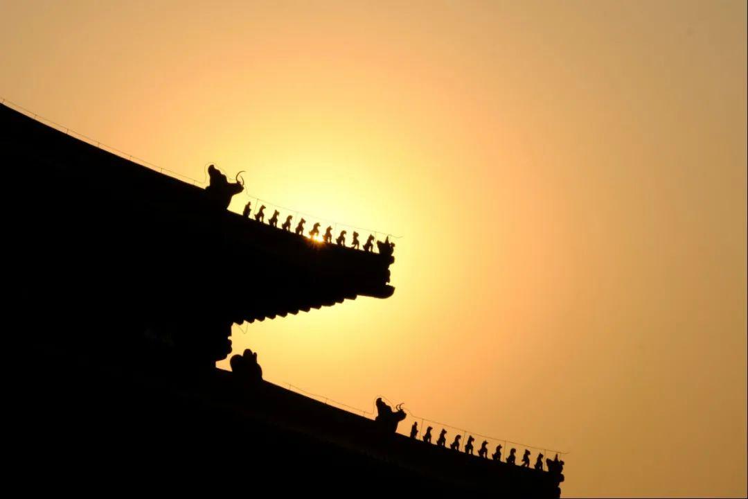 故宫海棠美上热搜!50张图带你看遍紫禁城的四时风光