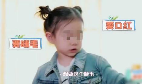 截图自节目视频。
