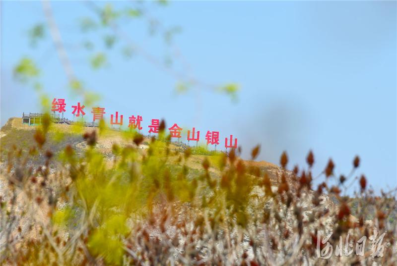 近年来,三河市投资80亿元,实施东部矿区矿山地质环境治理工程,对22平方公里废弃矿山进行生态修复治理,增绿于山,还绿于民,再现绿水青山。 河北日报记者赵永辉摄影报道