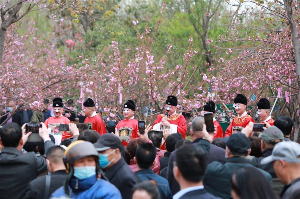 豫剧名家金不换等7名丑角演员现身樱花大道引来游客包围