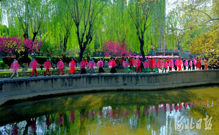 2021年4月7日,在河北省石家庄市平安公园内,平安公园雪绒花模特队在进行游园。