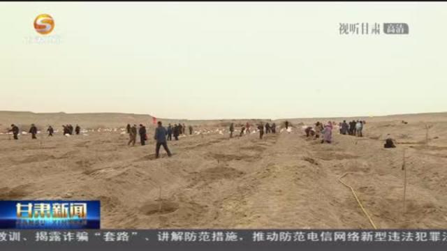 丝路古道栽胡杨 玉门关外催新绿