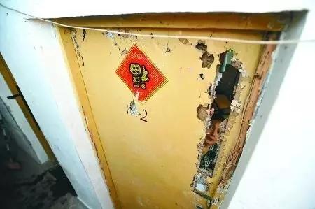 """进贤县麻石咀村遭5种白蚁侵""""食"""" 危害等级达到最高级"""