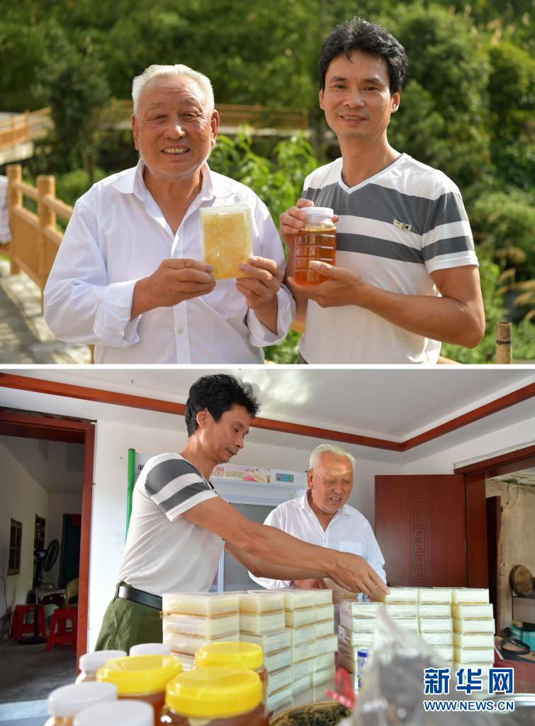 这是一张拼版照片,上图为:井冈山神山村村民彭水生和儿子彭小华展示自家出品的蜂蜜(2020年7月15日摄);下图为:神山村村民彭水生和儿子彭小华打包顾客订购的蜂蜜(2020年7月15日摄)。新华社记者 彭昭之 摄