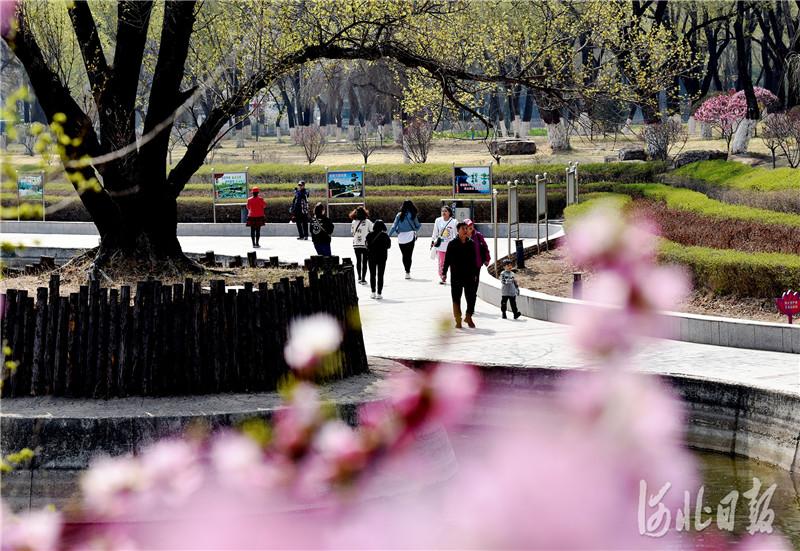 """2021年4月9日,河北省张家口市宣化区皇城街道大新门社区居民在家门口的""""袖珍""""公园休闲。近年来,该区在城市道路的金角银边、新建楼盘、棚户区改造等地块建设小而精、雅而美的""""袖珍公园"""",打造出""""眼前有绿、出门有园""""的和谐人居环境,让老百姓乐享绿色生活。目前,该区在城区建成""""袖珍""""公园30处。"""