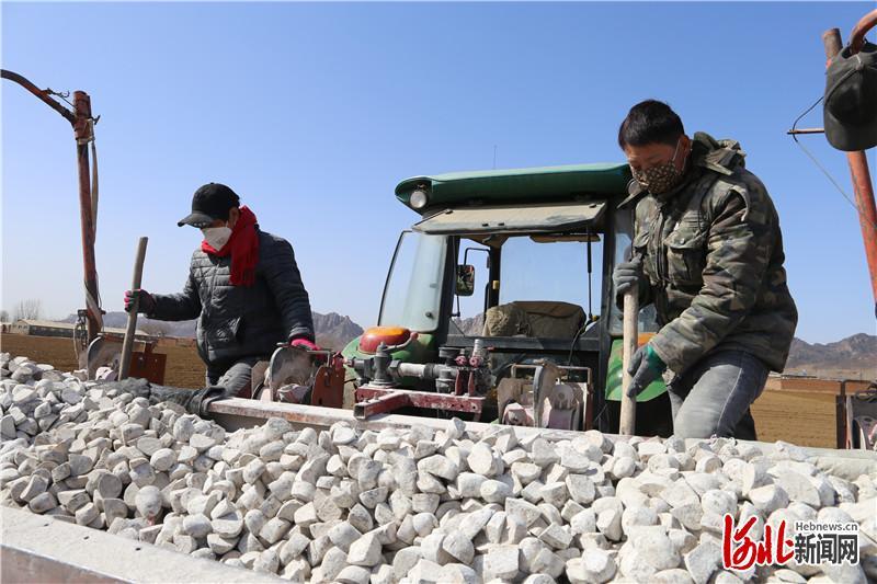 图为工人们正在播种马铃薯薯种。 通讯员 马嘉骏摄