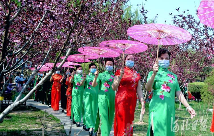 2021年4月7日,在河北省石家庄市平安公园内,平安公园雪绒花模特队在进行游园。河北日报记者杜柏桦摄影报道