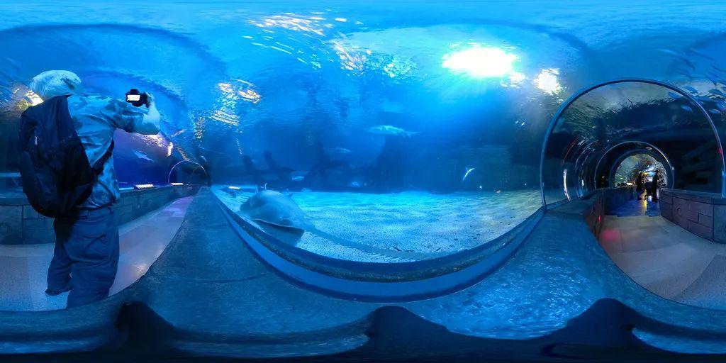 △美国购物中心里的360°水族馆/unsplash
