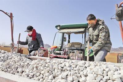 图为工人们正在播种马铃薯薯种。河北日报通讯员 马嘉骏摄